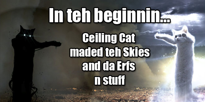 lolcat-header