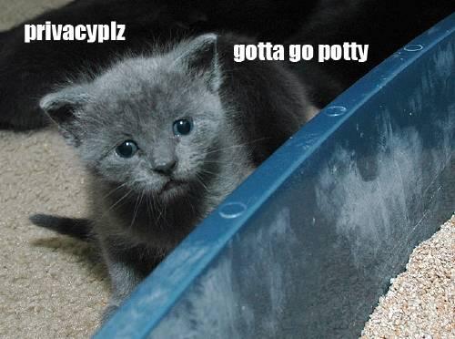 gotta-potty